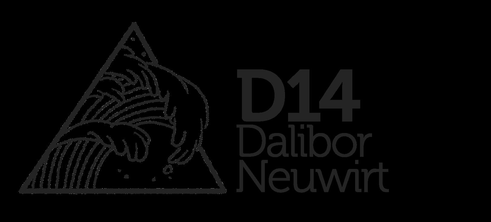 Dalibor Neuwirt - průvodce vizualizací vašeho hlasu